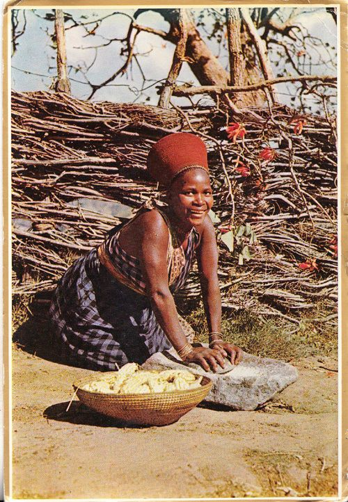 Zulu Woman Natal Cooking Africa African Tribe Fruit Basket  Rare Photo Postcard
