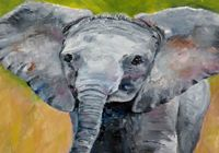 Elephant Postcards